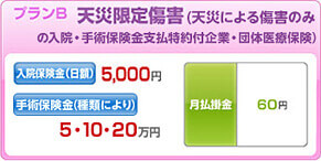 J CARD W plus L お守りリンダ 天災限定傷害保険