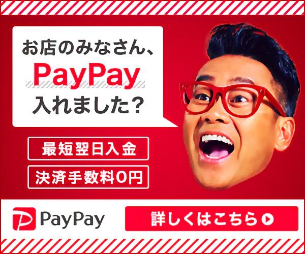 PayPay 導入ページへ